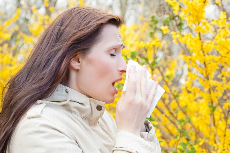 Autumn: Beat allergens in the workplace