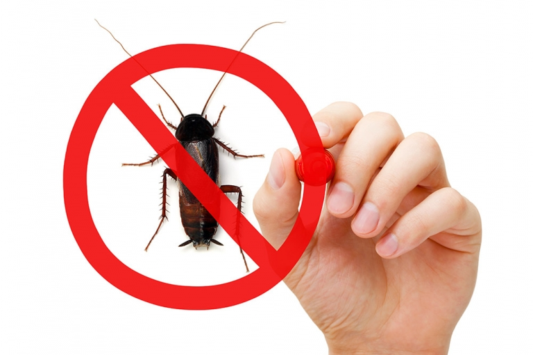 Six Tips for choosing a Pest Control Specialist