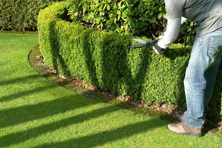 Grounds Maintenance for your commercial premises